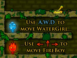 Fire Boy and Water Girl The Forest Temple